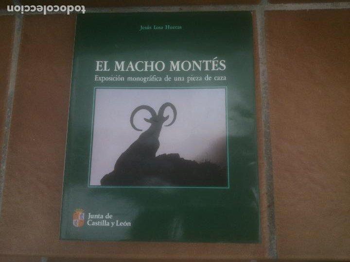 EL MACHO MONTES. EXPOSICIÓN MONOGRÁFICA DE UNA PIEZA DE CAZA. (Libros Nuevos - Ciencias, Manuales y Oficios - Otros)