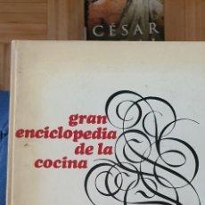 Libros: LIBRO DE COCINA. Lote 278587858
