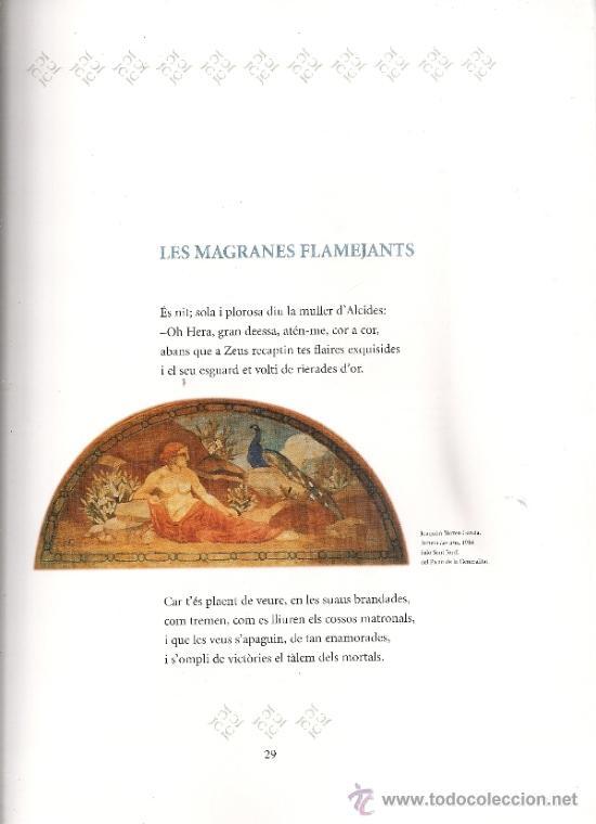 Libros de segunda mano: Josep Carner i Carles Riba. Laventura de dos poetes / Prol. i sel. J. Molas. BCN : Proa, 2003. 2 v. - Foto 4 - 38667567
