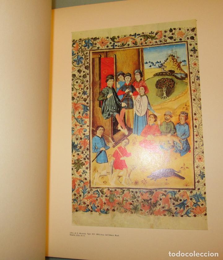 Libros de segunda mano: Libro del buen amor. Arcipreste de Hita - 3 t.(Contorno,Transcripción,Facsimil) - Espasa Calpe 1977 - Foto 7 - 67499925