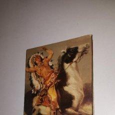Libros de segunda mano: SALGARI - EL GRAN CAZADOR DE LAS PRADERAS - 1959. Lote 71629843