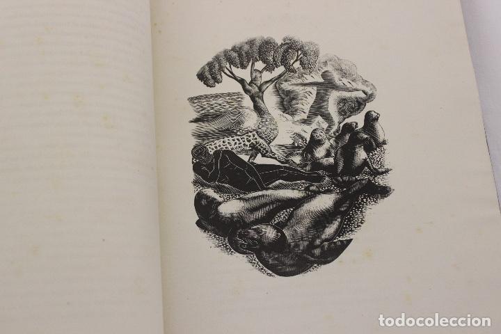 Libros de segunda mano: LA ODISSEA DE HOMER, TRADUCIDA AL CATALÁN POR CARLES RIBA GRABADOS A LA MADERA POR E.C. RICART. 1948 - Foto 9 - 152301842