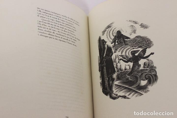 Libros de segunda mano: LA ODISSEA DE HOMER, TRADUCIDA AL CATALÁN POR CARLES RIBA GRABADOS A LA MADERA POR E.C. RICART. 1948 - Foto 13 - 152301842