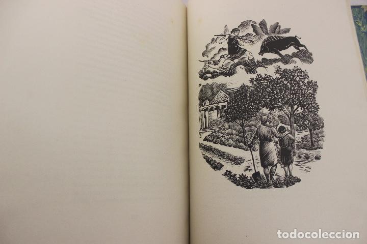 Libros de segunda mano: LA ODISSEA DE HOMER, TRADUCIDA AL CATALÁN POR CARLES RIBA GRABADOS A LA MADERA POR E.C. RICART. 1948 - Foto 27 - 152301842