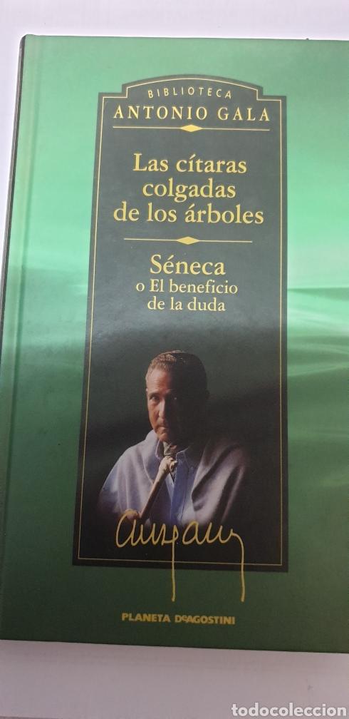 ANTONIO GALA . LAS CITARAS COLGADAS DE LOS ARBOLES (Libros de Segunda Mano (posteriores a 1936) - Literatura - Narrativa - Clásicos)