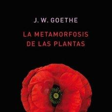 Livros: LA METAMORFOSIS DE LAS PLANTAS GOETHE, JOHANN WOLFGANG 22,5 CM TAPA DURA EDICIONES ATALANTA, S.L., 2. Lote 207156276