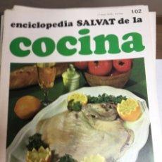 Libros: ENCICLOPEDIA SALVAT DE LA COCINA - Nº 102 - 17/1/1974 - EN PERFECTO ESTADO. Lote 191879696
