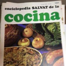 Libros: ENCICLOPEDIA SALVAT DE LA COCINA - Nº 101 - 10/1/1974 - EN PERFECTO ESTADO. Lote 191879805