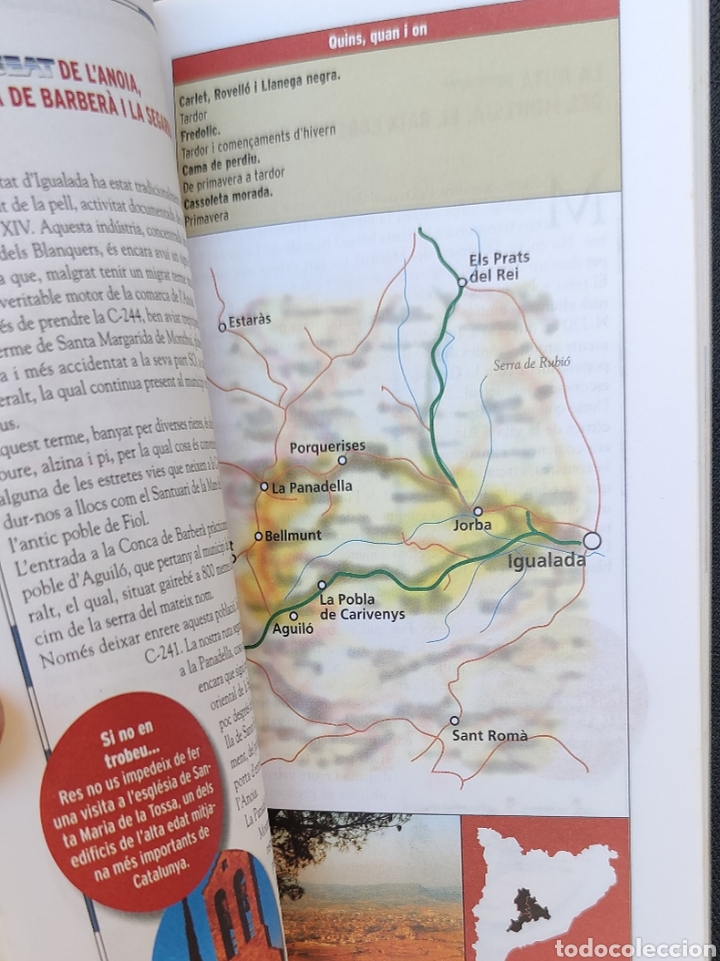 Libros: Els camins dels bolets - Descobrir, Guia SEAT del boletaire 1998 - Foto 3 - 213204498