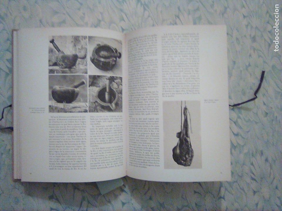 Libros: 2. ELS FORMATGES DE CATALUNYA - E.CANUT -F.NAVARRO - ALTA FULLA - COM FER-LOS, EINES, RAMATS... - Foto 2 - 194533026