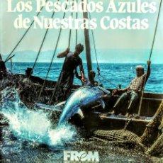 Libros: LOS PECES AZULES DE NUESTRAS COSTAS. FROM. Lote 238772805