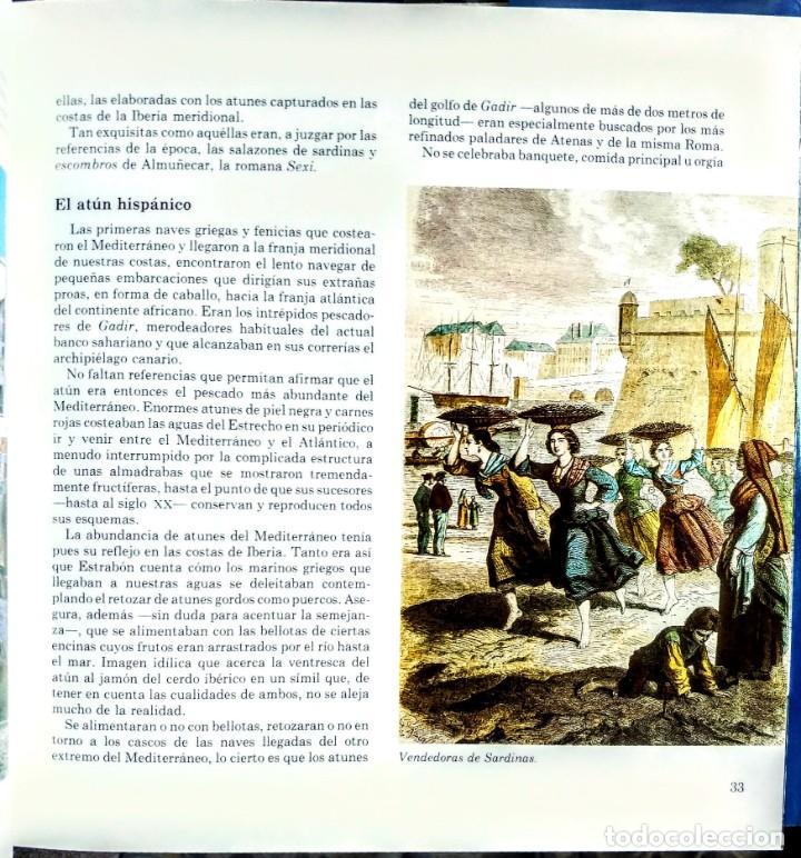 Libros: LOS PECES AZULES DE NUESTRAS COSTAS. FROM - Foto 3 - 238772805