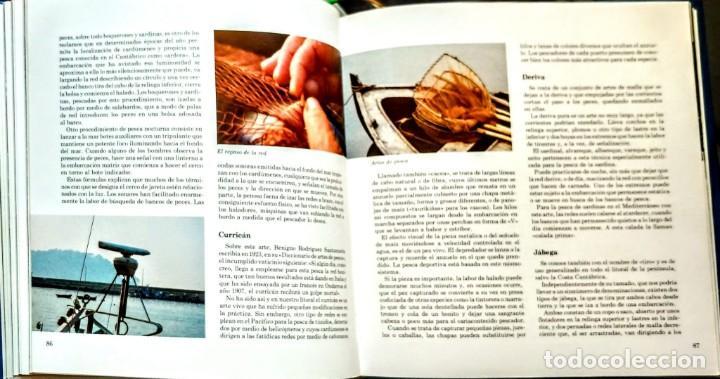 Libros: LOS PECES AZULES DE NUESTRAS COSTAS. FROM - Foto 4 - 238772805