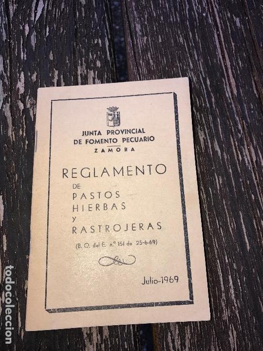 ZAMORA,REGLAMENTO MUNICIPAL DE PASTOS Y RASTROJALES (Libros Nuevos - Humanidades - Comunicación)