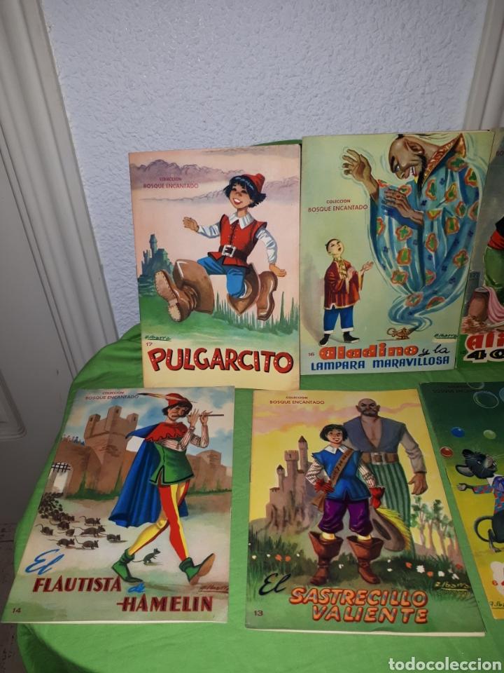 Libros: Lote cuentos COLECCION BOSQUE ENCANTADO ILUSTRACIONES A . IBARRA COMO NUEVOS - Foto 2 - 157954864
