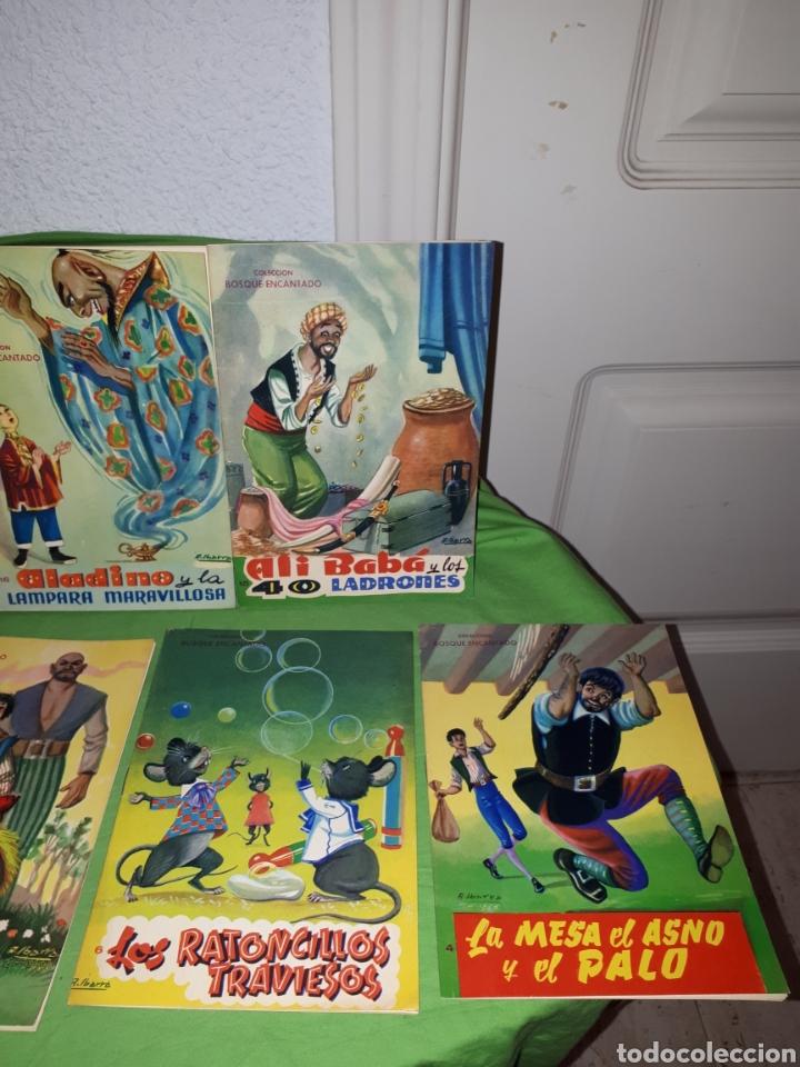 Libros: Lote cuentos COLECCION BOSQUE ENCANTADO ILUSTRACIONES A . IBARRA COMO NUEVOS - Foto 3 - 157954864