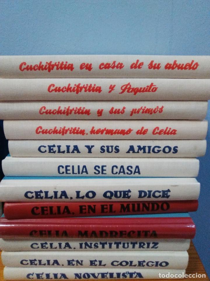 6 LIBROS CELIA Y DE SU HERMANO CUCHIFRITIN. ELENA FORTUN. ED. SANTILLANA, AGUILAR. 2004 (Libros Nuevos - Literatura Infantil y Juvenil - Cuentos infantiles)