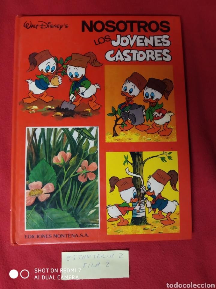 NOSOTROS LOS JÓVENES CASTORES TOMÓ 2 (Libros Nuevos - Literatura Infantil y Juvenil - Cuentos infantiles)