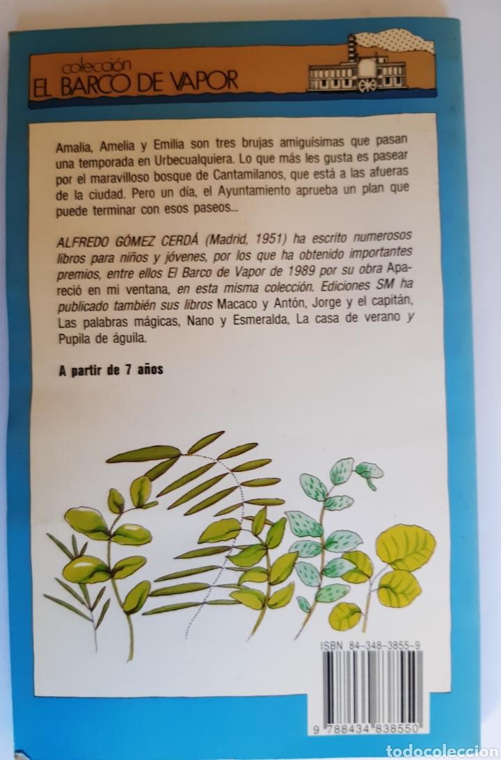 Libros: Amalia, Amelia y Emilia, el barco de vapor número 53, S.M - Foto 2 - 234507840