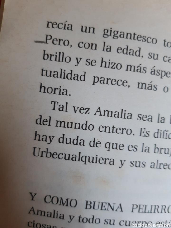 Libros: Amalia, Amelia y Emilia, el barco de vapor número 53, S.M - Foto 6 - 234507840