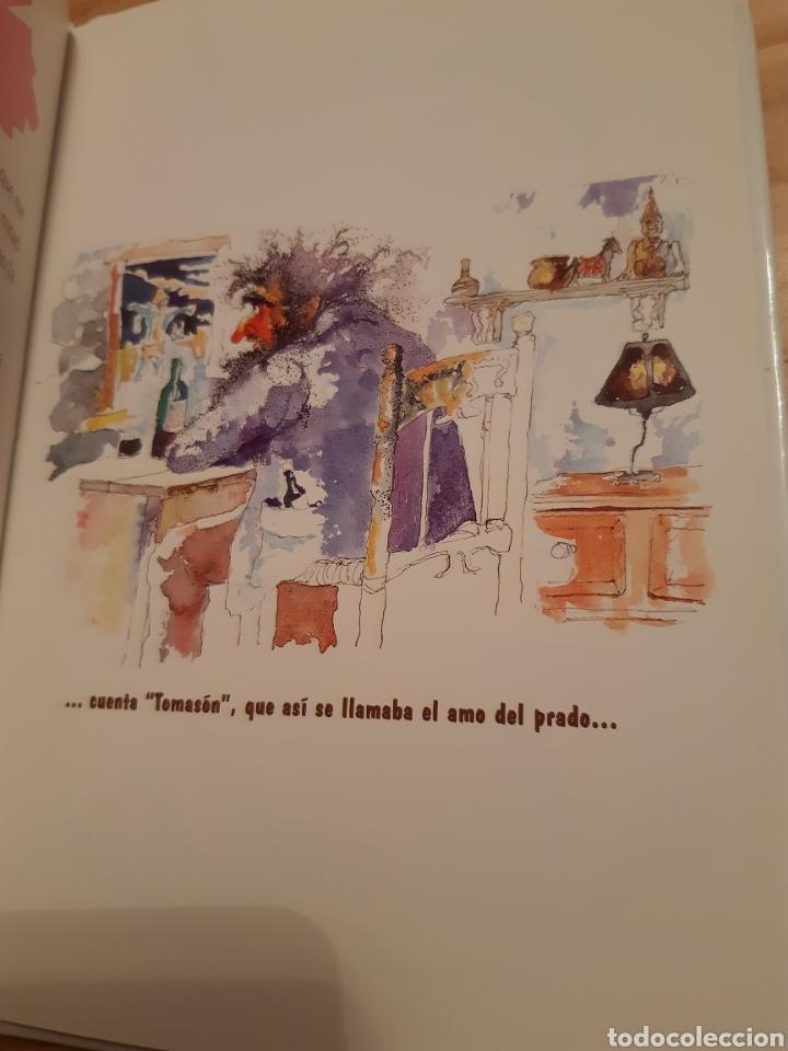 Libros: Los sueños de Ppepino el espantapájaros no 2,cuentos tradicionales Cantabria, colección Escanillu. - Foto 4 - 235176870
