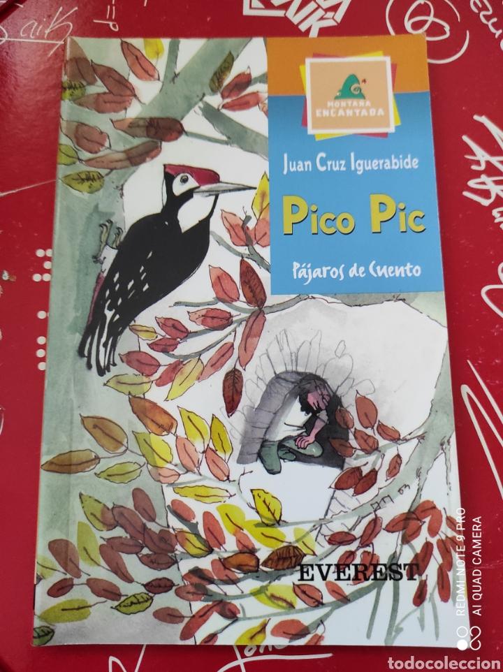 LIBRO PICO PIC PÁJAROS DE CUENTO. AUTOR: JUAN CRUZ IGUERABIDA. EDITORIAL: EVEREST (Libros Nuevos - Literatura Infantil y Juvenil - Cuentos infantiles)