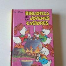 Libros: BIBLIOTECA DE LOS JOVENES CASTORES TOMO 13. 1984. Lote 268913139