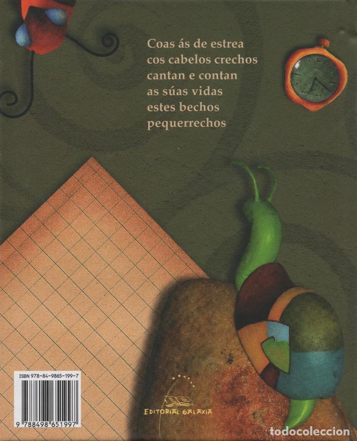 Libros: Bechos pequerrechos. María Lires. Árbore/Galaxia. 2009. NUEVO. - Foto 2 - 269770208