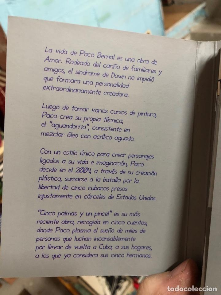 Libros: Cinco palmas y un pincel - minicuentos ilustrados en caja contenedora - Foto 2 - 285688403