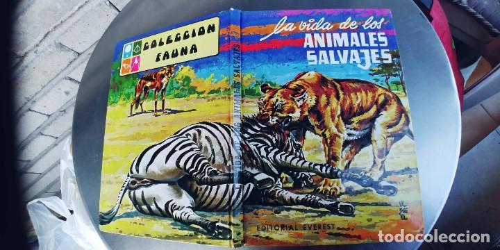 LA VIDA DE LOS ANIMALES SALVAJES ,EDICIONES EVEREST ,TAPA DURA (Libros Nuevos - Literatura Infantil y Juvenil - Cuentos juveniles)