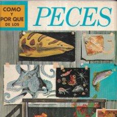 Libros: COMO Y POR QUE DE LOS PECES - Nº 20 - ED. MOLINO 1970. Lote 266527228
