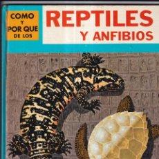 Libros: COMO Y POR QUE DE LOS REPTILES Y ANFIBIOS - Nº22 - ED. MOLINO 1970. Lote 266530143