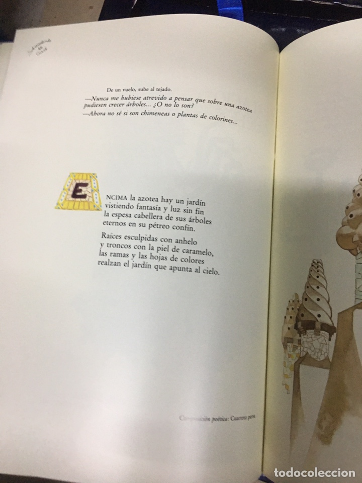 Libros: SOBREVOLANT GAUDI - CYAN EDICIONS - DOS LIBROS CON COFRE - - Foto 7 - 224571320