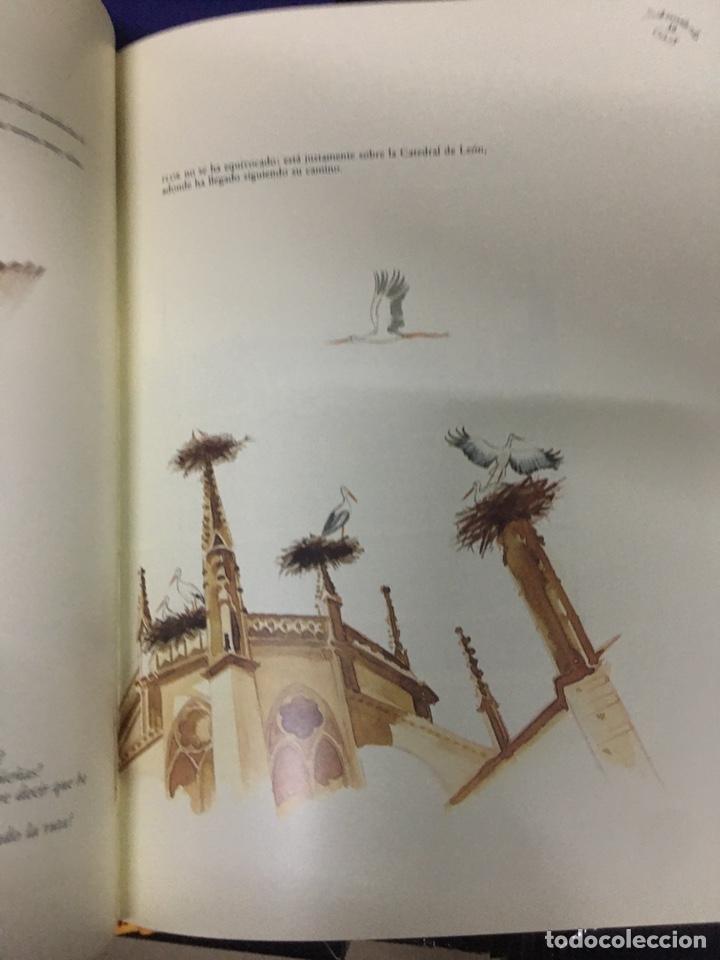 Libros: SOBREVOLANT GAUDI - CYAN EDICIONS - DOS LIBROS CON COFRE - - Foto 12 - 224571320