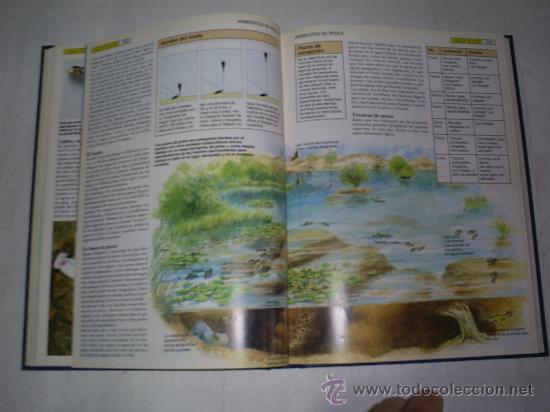 Coleccionismo deportivo: Guía Práctica de la Pesca Volumen 1 Técnicas y Equipo Editorial Planeta-De Agostini 1991 RM51689 - Foto 2 - 27661724
