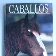 Coleccionismo deportivo: CABALLOS. MICHAEL CLAYTON. SUSAETA 1991 85 PAG. Lote 42984119