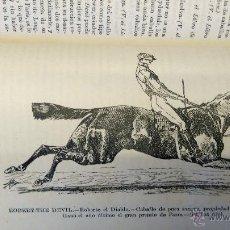 Coleccionismo deportivo: LIBRO DICCIONARIO HIPICA Y DEL SPORT, AÑO 1881 TEMA CABALLOS,CABALLERIA,EQUITACION,RAZAS,CON DIBUJOS. Lote 51690276
