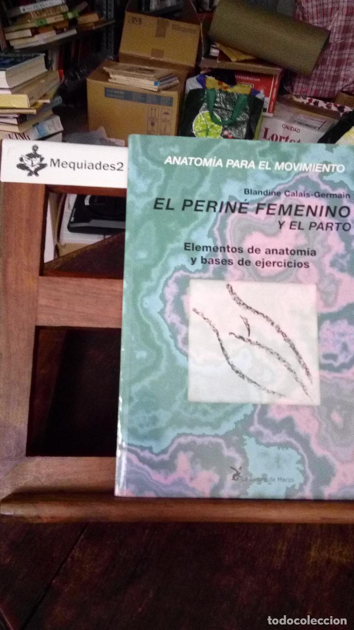 anatomia para el movimiento: el periné femenino - Comprar en ...