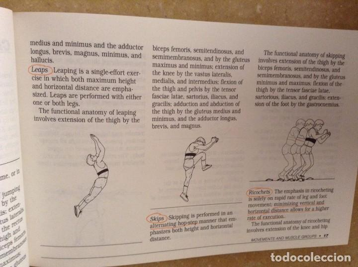 Coleccionismo deportivo: PYLOMETRICS. EXPLOSIVE POWER TRAINING - RADCLIFFE, FARENTINOS - - Foto 8 - 97187131