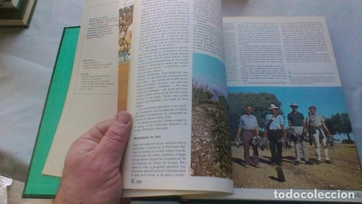 Coleccionismo deportivo: ENCICLOPEDIA SALVAT DE LOS DEPORTES - 12 TOMOS - VER FOTOS INDICES CONTENIDO - Foto 84 - 156676030