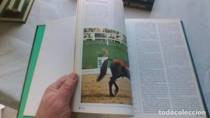 Coleccionismo deportivo: ENCICLOPEDIA SALVAT DE LOS DEPORTES - 12 TOMOS - VER FOTOS INDICES CONTENIDO - Foto 108 - 156676030