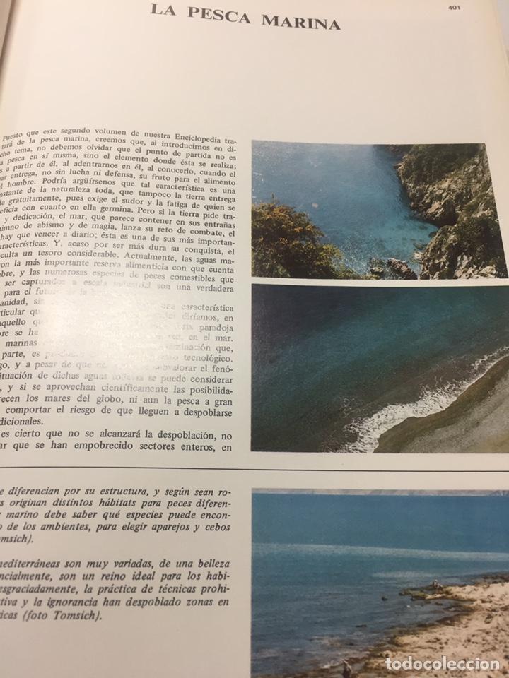 Coleccionismo deportivo: Enciclopedia de la Pesca - Foto 4 - 204474670