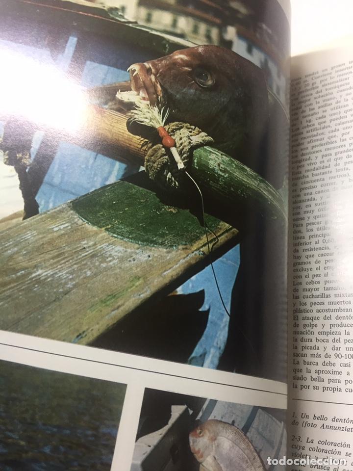 Coleccionismo deportivo: Enciclopedia de la Pesca - Foto 5 - 204474670