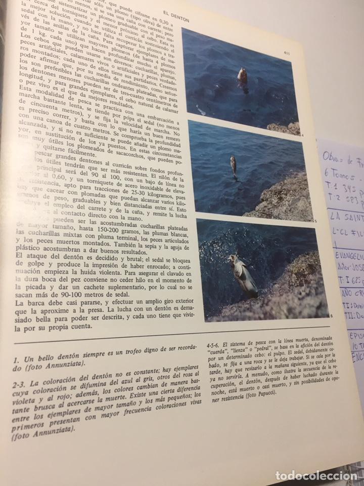 Coleccionismo deportivo: Enciclopedia de la Pesca - Foto 6 - 204474670