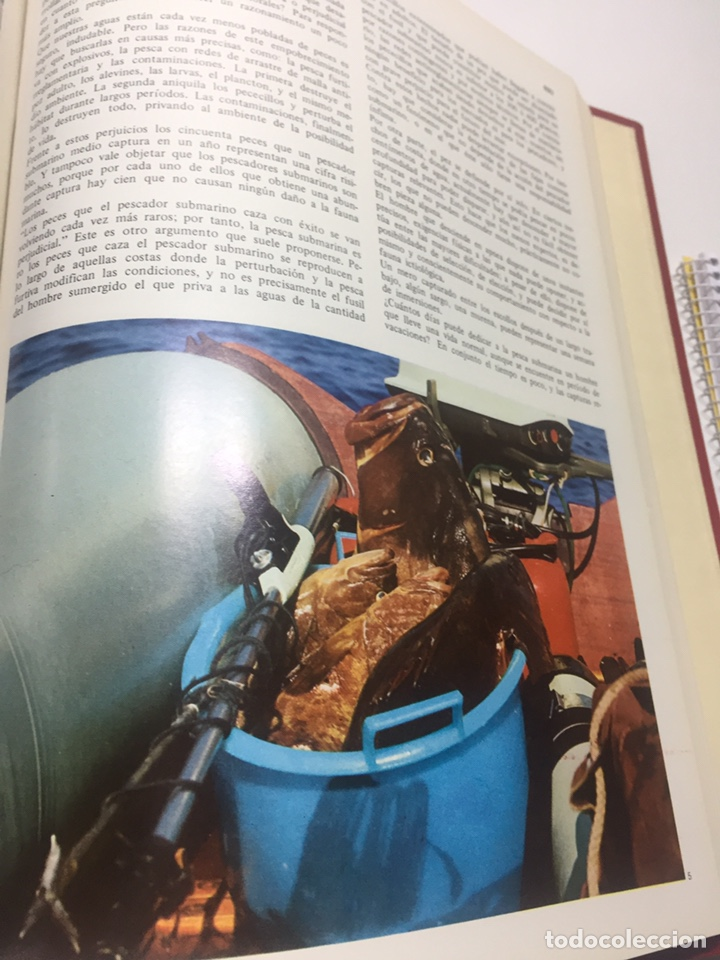 Coleccionismo deportivo: Enciclopedia de la Pesca - Foto 10 - 204474670