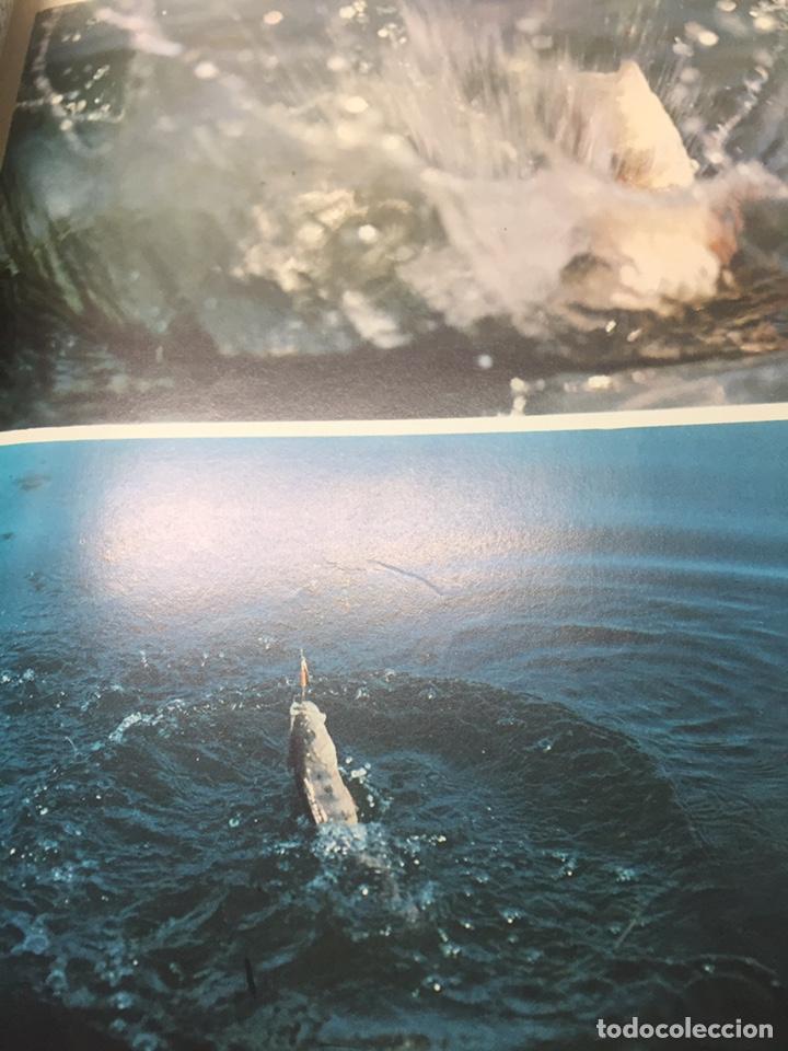 Coleccionismo deportivo: Enciclopedia de la Pesca - Foto 16 - 204474670