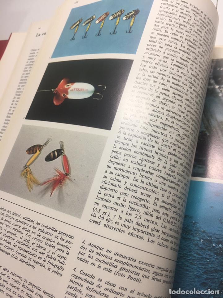 Coleccionismo deportivo: Enciclopedia de la Pesca - Foto 17 - 204474670