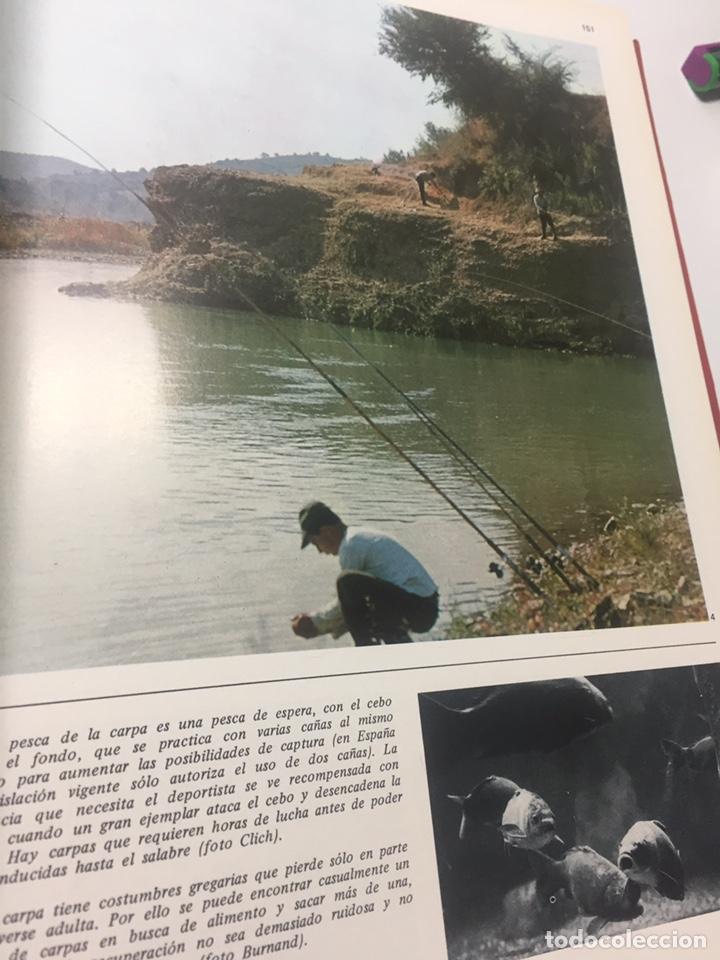 Coleccionismo deportivo: Enciclopedia de la Pesca - Foto 18 - 204474670