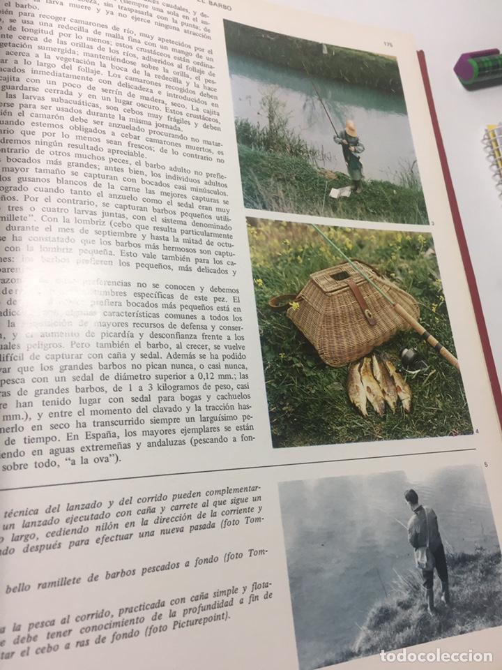 Coleccionismo deportivo: Enciclopedia de la Pesca - Foto 19 - 204474670