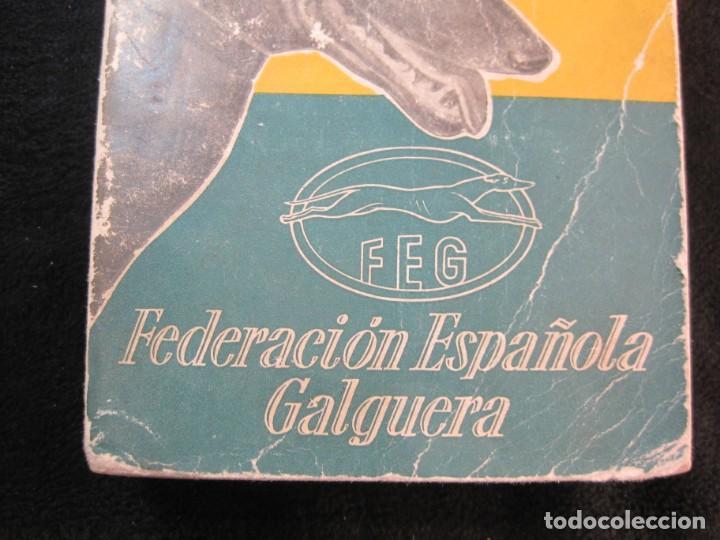 Coleccionismo deportivo: GALGOS-FEDERACION ESPAÑOLA GALGUERA-MEMORIA DEPORTIVA 1965-VER FOTOS-(K-2084) - Foto 4 - 248306145